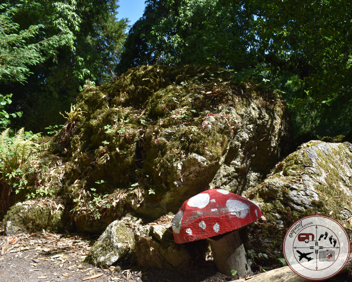 Fairy Garden, Rock Close, Blarney Castle Grounds, Ireland; things to do in Ireland; the ultimate Ireland road trip